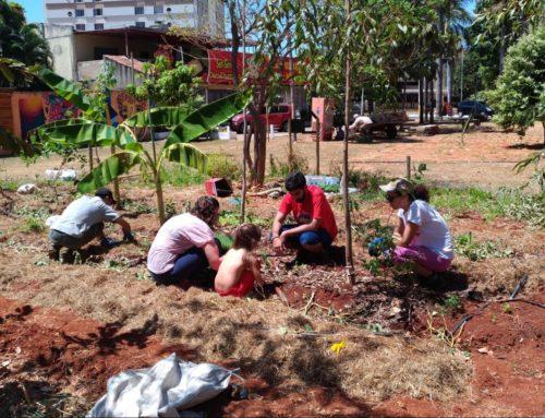 COURB apoia expansão de agrofloresta urbana em Goiânia
